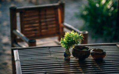 Den seneste trend: derfor skal du vælge bambusmøbler til din bolig